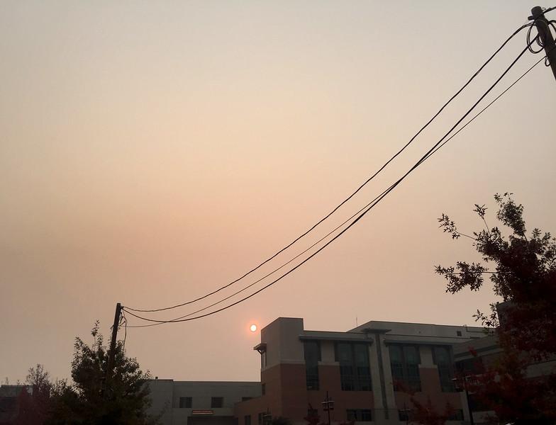 smoke day.jpg
