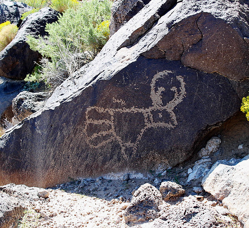New Mexico 2016