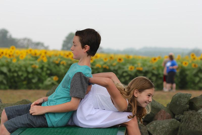 FamilySunflowers_ 26.jpg