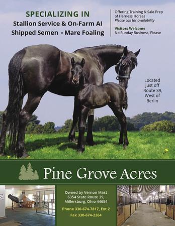 Vernon Mast - Pine Grove Acres