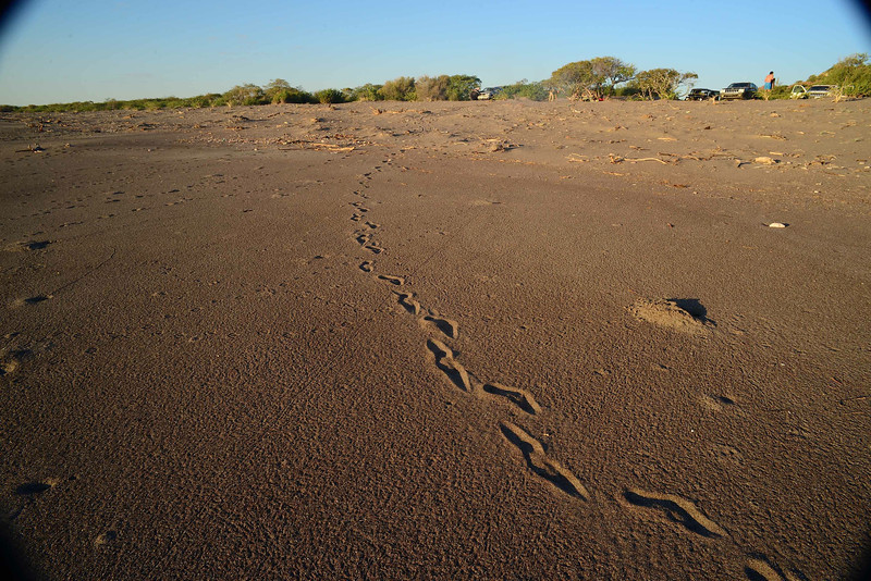 this is how I like beaches - the first footprints are your own