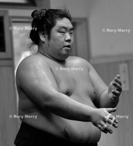 Sumo Training Stable 2013 Black & White