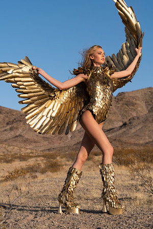 Wings Images - Unretouched