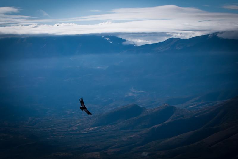 Tarija 201205 Valle de Los Condores (249).jpg