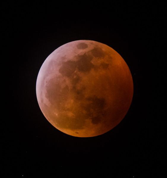 Lunar Eclipse 1-20-19.jpg