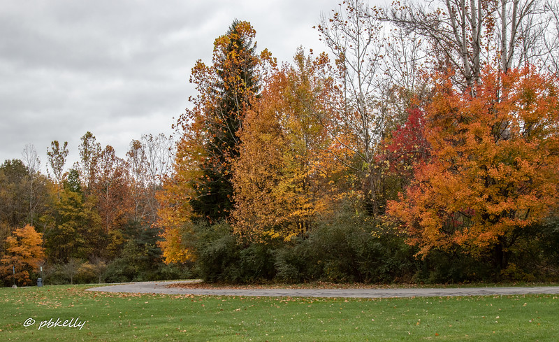 Indian Hollow color 102420-2.jpg