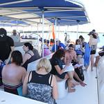 Cuba - Catamaran and Dolphins!