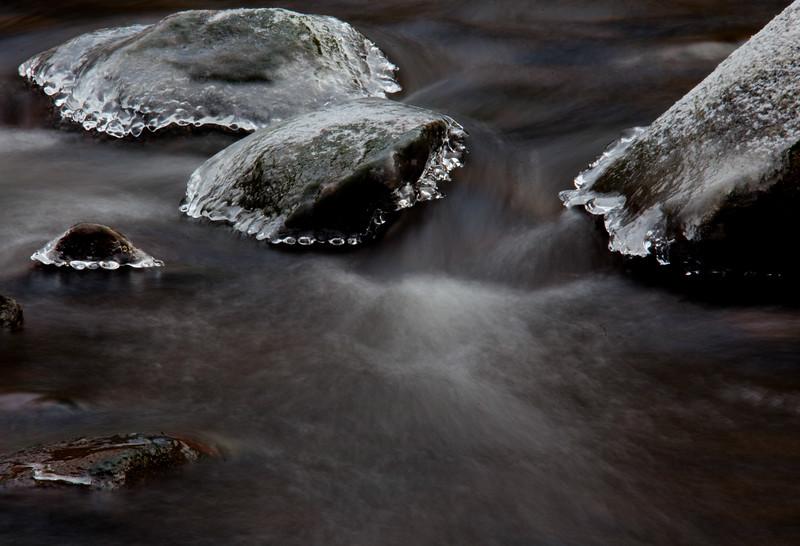 gull river 2011 (1 of 4).jpg