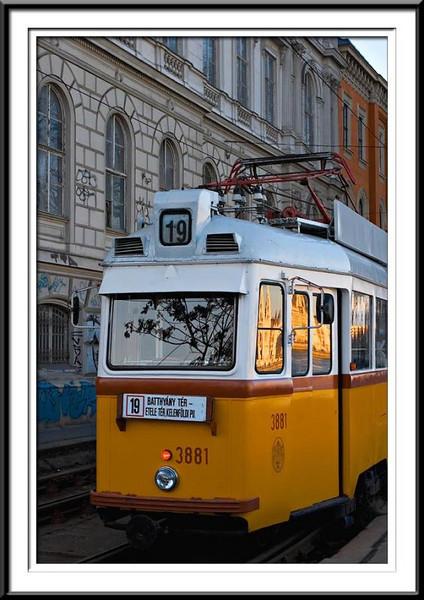 tram (56495807).jpg