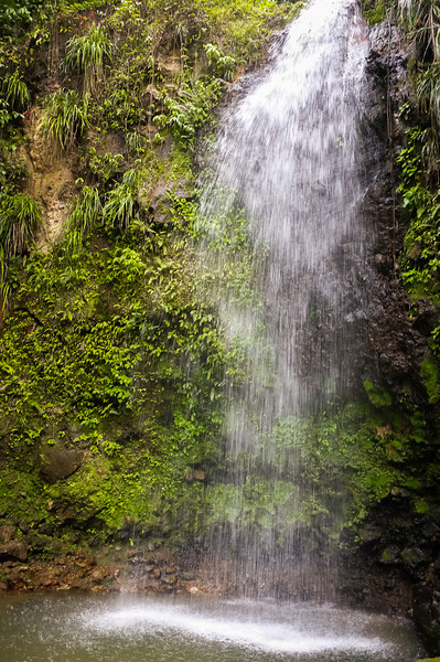 12May_St Lucia-fuji_157.jpg