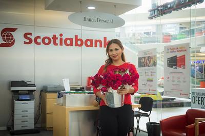 Dia de las Madres Scotiabank Cascadas