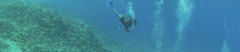 Maui - Hawaii - May 2013 - 20.jpg