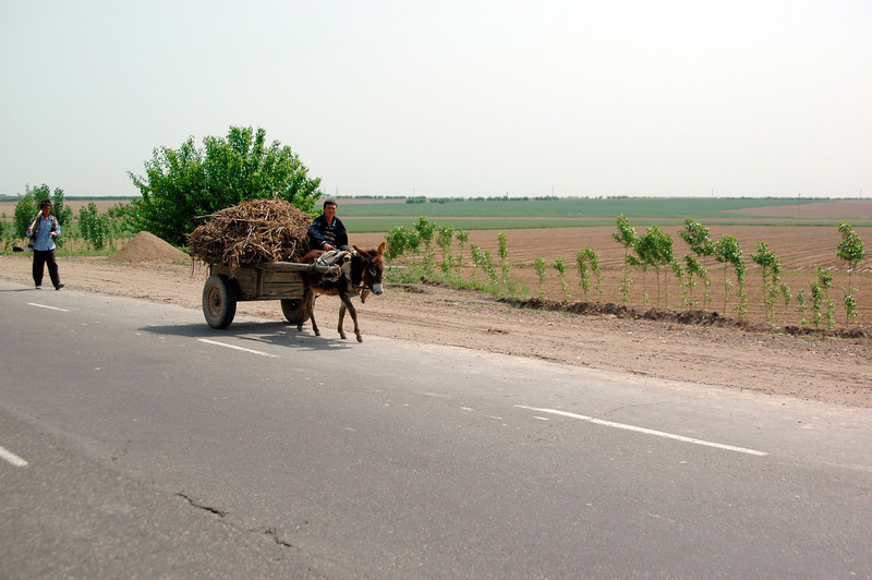050427 3872 Uzbekistan - Samarkand - Road Trip to Tashkent _D _E _I ~E ~L.JPG