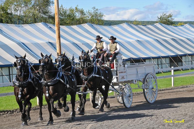 Grange Fair 2010   --  Thursday Draft Horse Show - Afternoon   --  Centre Hall Pennsylvania