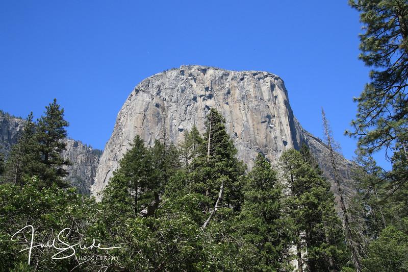 Yosemite 2018 -27.jpg