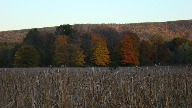 App.Trail Fall 2008,Fl. Maine 185.JPG