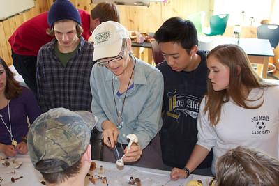 Mycology with Sue VanHook
