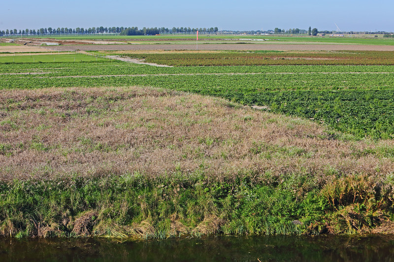 180918-Rijnland-Wilmar-Schiph-27.jpg