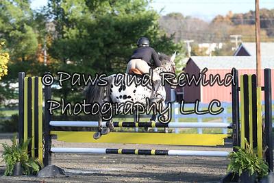 Ring I: High Pony Jumper