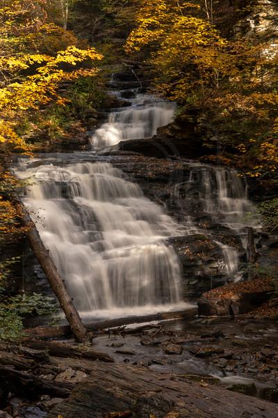 Mohican Falls-DSC_7534.jpg