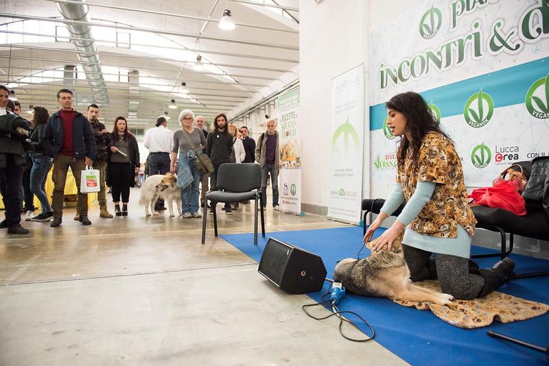 lucca-veganfest-conferenze-e-piazzetta_3_005.jpg