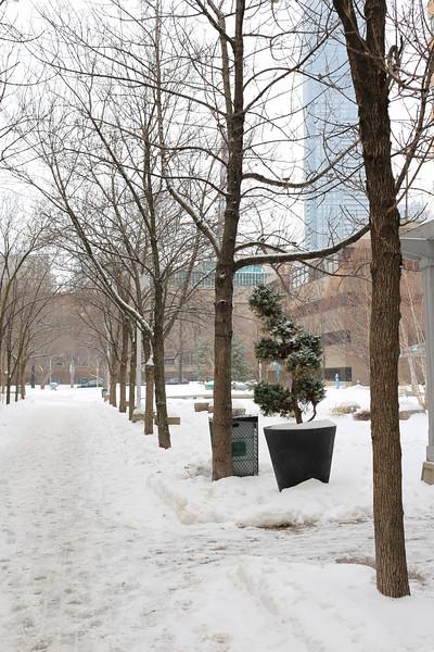 Ryerson On A Snowy Day