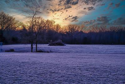 15_Long Branch Farm_Winter 2020