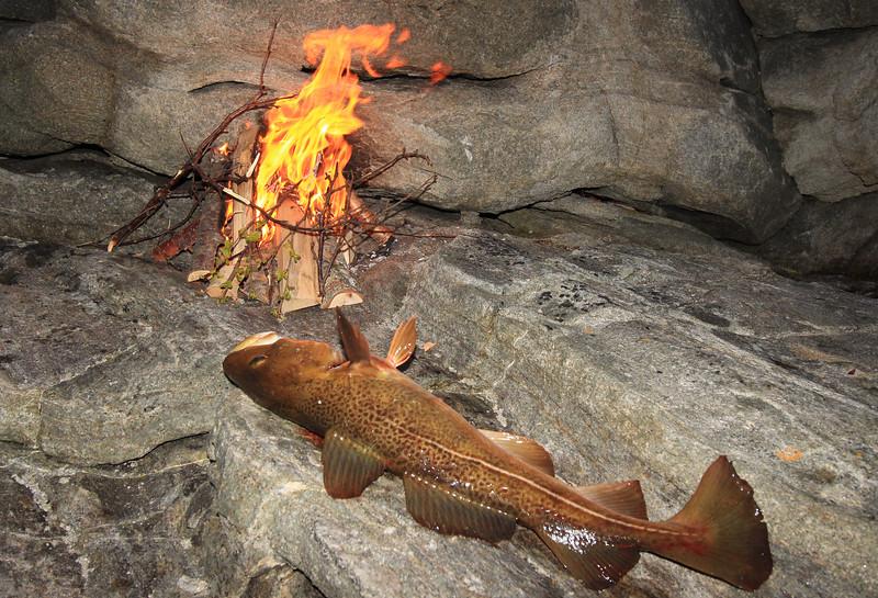Fishing trip in Ausvika