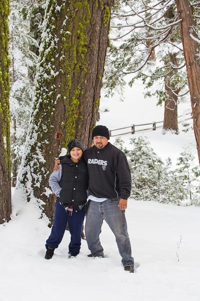 Sequoia NTL Park 2015-4715.jpg