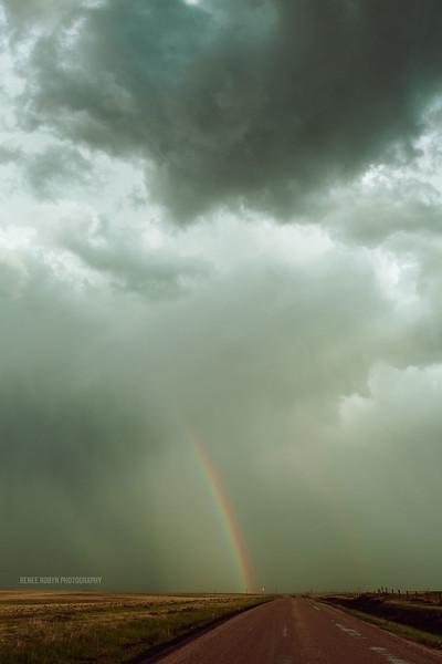 Storm_W0C5331WEB.jpg