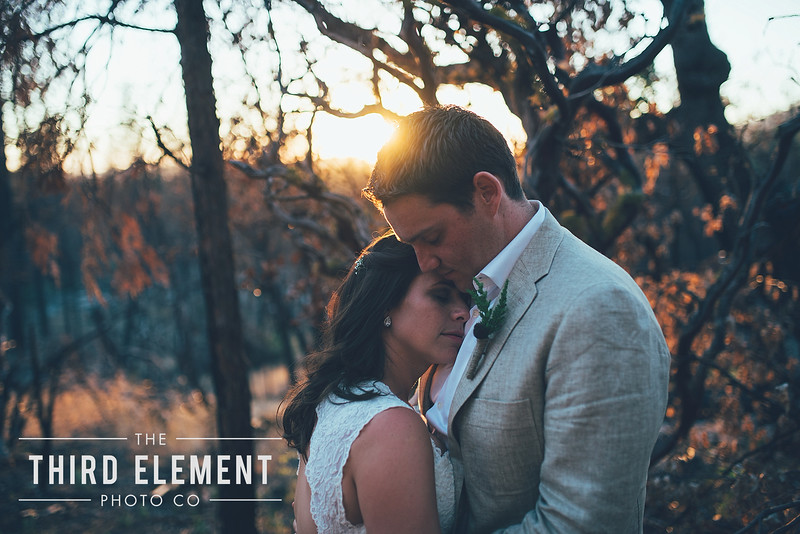 Third Element Photo Co Brittney + Errol Yosemite Wedding Hetch Hetchy San Francisco_0019.jpg