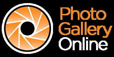 PGO-Logo-STACK-REV.png