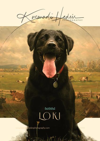 IG Story Loki Faithful 03 11062020.jpg