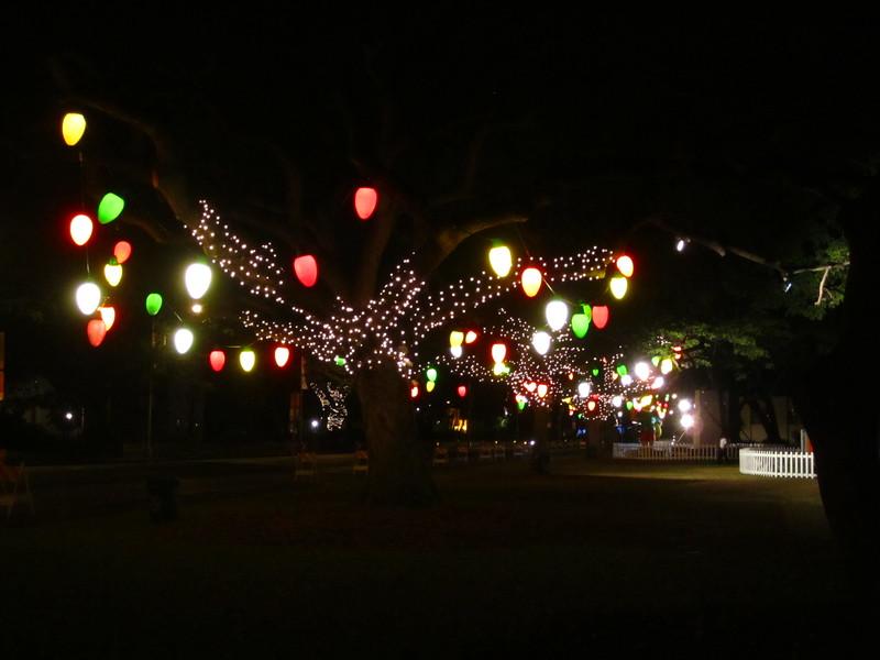 Hawaii - Honolulu City Lights-7.JPG