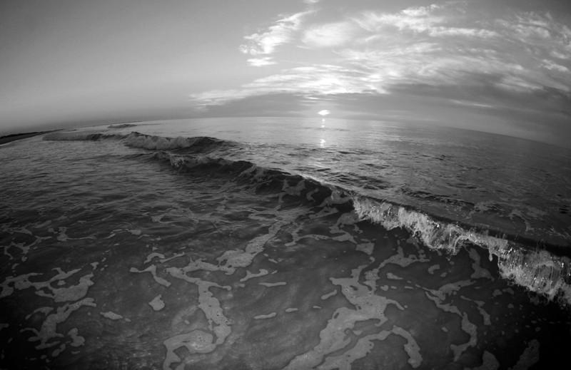SCOPe_Huntington Beach State Park OCT 2012_10 B&W.jpg
