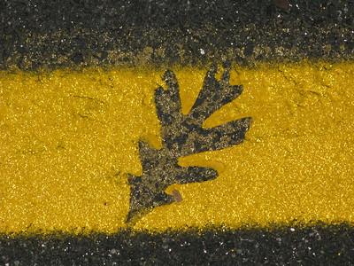 Yellow Line Road Art