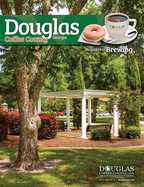Douglas-Coffee County NCG 2017 - Cover (3).jpg