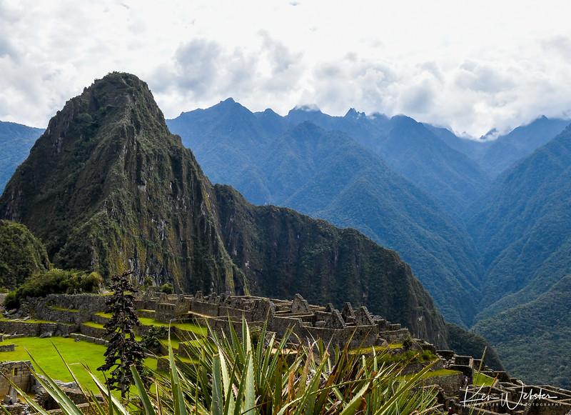 2018 Machu Picchu-8.jpg