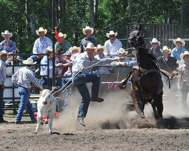 Calf Roping (Section 1)