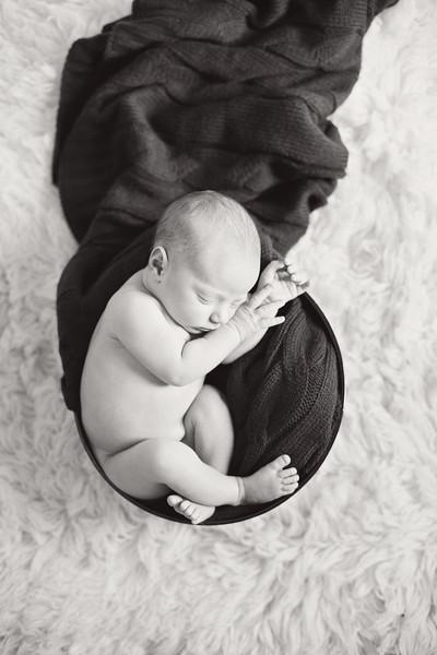 Noah Newborn