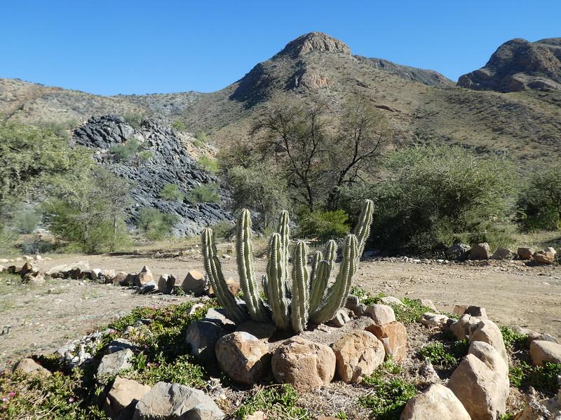 Namibia Lumix  (116).JPG
