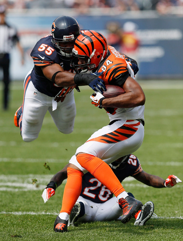 . Chicago Bears linebacker Lance Briggs (55) dives over teammate Tim Jennings (26) to tackle Cincinnati Bengals tight end Jermaine Gresham (84) during the first half of an NFL football game, Sunday, Sept. 8, 2013, in Chicago. (AP Photo/Charles Rex Arbogast)