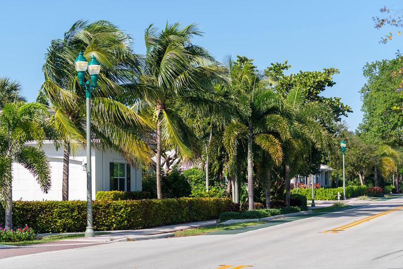 Spring City - Florida - 2019-307.jpg