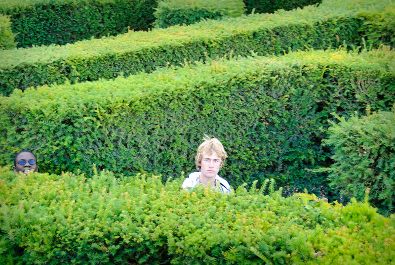 Preston is looking a bit annoyed that he's not yet found in the way in the maze at Leeds Castle