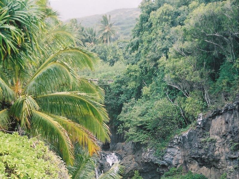 Hawaii-184.jpg