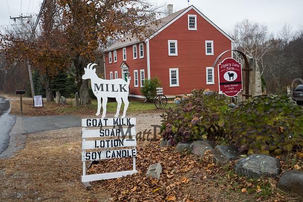 2019-11-5 Legacy Lane Farm Goat Yoga
