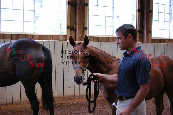 Westphalians Inspection at Willow Hill 9-17-09