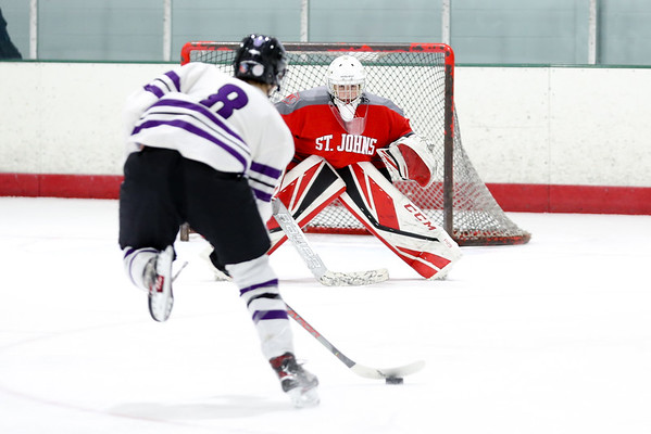 2019-20 SJC Hockey