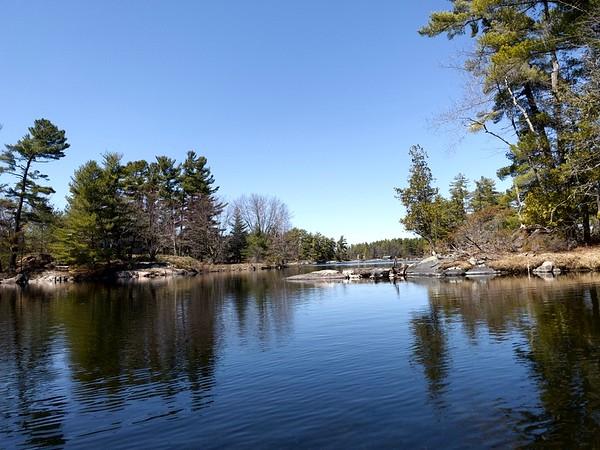 Stoney Lake COVID