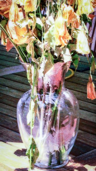 through-a-glass-darkly008.jpg